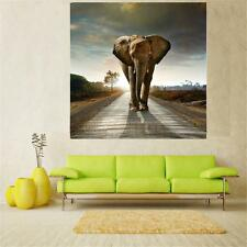 20/30/40/50/60cm Unframed Canvas Wall Hanging Art Painting Picture Elephant
