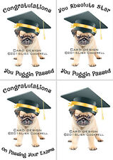 Pug Dog Congratulations On Passing Your Exams Card - A Level, GCSE, Exams