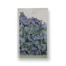 Forget Me Not Flower Seeds for DIY Wedding Favours - Unusual Wedding Favours