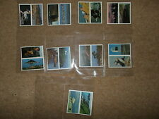 TRADE CARD ODDS BROOK BOND DISCOVERING COAST TWO PICTURES PER CARD