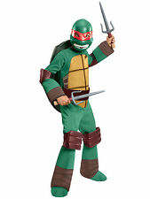 Raphael Deluxe Raph Teenage Mutant Ninja Turtles TMNT Superhero Boys Costume