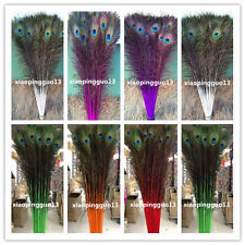 Wholesale!10/20/50/100 PCS peacock feathers eye 28-32 inches / 75-80 cm