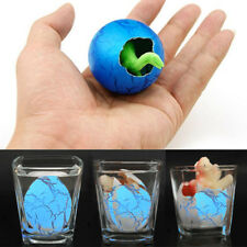 Incubate Water Toys Dinosaur Egg New Hatching Growing Educational Expand J