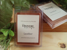 Fall and Holiday Soy Wax Clamshell Melt Tart- 2wks of Fragrance/Clamshell