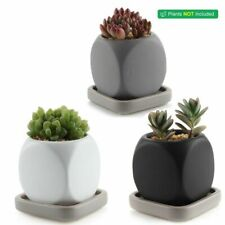 Nordic Decoration Home Garden Ceramic Modern Dice Succulent Plant Pot Cactus