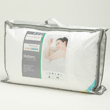 Silk Pillows - luxuirous 100% Mulberry  filling rrp£299