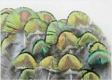 Wholesale 20 root to 100 root - GREEN GOLD PEACOCK NECK PLUMAGE FEATHERS
