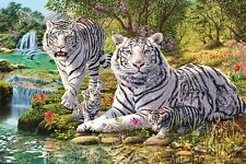 New White Tiger Clan Hidden Images Poster