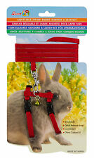 Dwarf Rabbit Harness Set. 5 Colours - Suitable for Lizards Dogs Cats Adjustable
