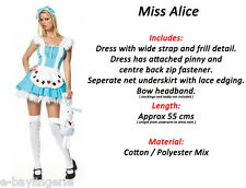 Alice in Wonderland Costume CHRISTMAS Halloween Fairy Tale Fairytale Book Theme