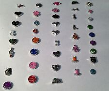 Floating living charms Memory lockets US Shipper 2