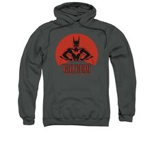Batman Beyond Stand Tall DC Comics Licensed Adult Pullover Hoodie S-3XL