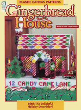 Gingerbread House Centerpiece Display plastic canvas patterns OOP new