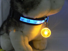 Cute Pet Dog Cat Puppy LED Flashing Collar Safety Night Light Pendant New
