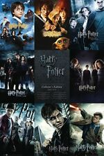 New From Boy to Wizard The Complete Harry Potter Poster
