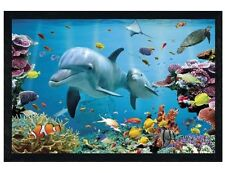 Black Wooden Framed Tropical Dolphins Maxi Poster 91.5x61cm