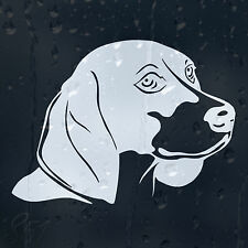 Funny Dog On Board Car Decal Vinyl Sticker For Bumper Or Panel Or Window