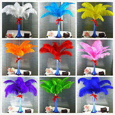 10pcs-100pcs High Quality Natural OSTRICH FEATHERS  wedding 6-28'inch/15-70cm