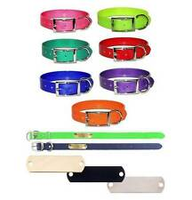 SunGlo Personalized Dog Collar w/ Engraved Name Plate * All Weather Resistant