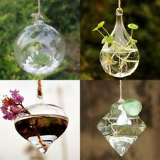 Hot Clear Terrarium Glass Vaso Hanging Vase Planter Container Home Wedding Decor
