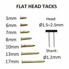 Brass small tack nails, brad, escutcheon pins: 8-17mm x 1.2mm - Flat head