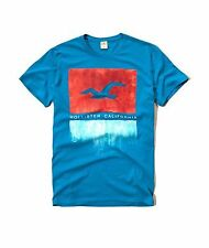 Nwt Hollister By Abercrombie & Fitch Men's Graphic Logo T Shirt Turquoise