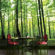Photo Wallpaper FOREST WOOD TREES Wall Mural (186VE)