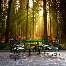 Photo Wallpaper FOREST WOOD TREES Wall Mural (576VE)