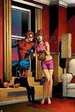 Marvel Amazing Spider-Man No.515 Cover: Spider-Man, and Mary Jane Watson Poster
