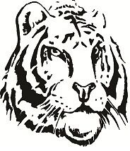Tiger Face View – Tiger Head - Vinyl Decal Sticker For Car, Truck, Home Decor.