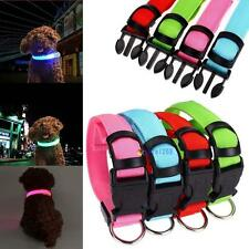 HOT LED Dog Night Safety Pet Flashing Light Adjustable Cat Nylon Collar Leash TF