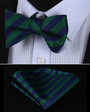 BS316G Green Blue Stripe Men Silk Classic Self Bow Tie Pocket Square set