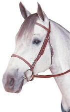 Kincade Raised Fancy Stitched Hunter Bridle with Hook Stud Ends and Reins
