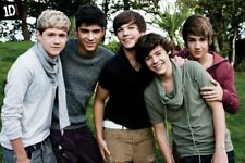 New One Direction Beautiful Boys in the Garden 1D Poster