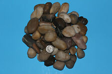 30LBS 10LBS MIXED COLOR Natural Rock pebble garden river pond SMALL LARGE MEDUIM