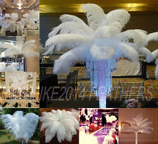 Wholesale 10/50/100pcs Natural OSTRICH FEATHERS white 20-55cm/8-22'inch Wedding