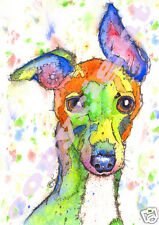 JOSIE P PRINTS of Original Watercolour Dog Painting Whippet Greyhound XL/A3/A4