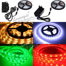 5M 3528 5050 SMD 300LED Waterproof IP65 Flexible Strip Rope Light + DC+12V Power