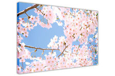 CHERRY BLOSSOM TREE CANVAS WALL ART PRINTS FLORAL IMAGES HOME DECO PICTURES