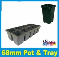 Plant Pots / Tube 68mm with Matching Punnet Tray - Propagation & Seedling
