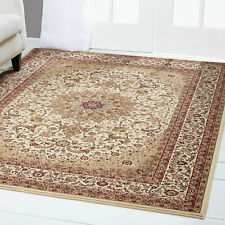 Ivory Beige Bordered Area Rug Traditional Persian Oriental Carpet Rugs Area Rugs