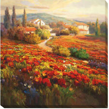 Poppy Fields by Roberto Lombardi Painting Print on Wrapped Canvas