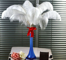 10/100pcs 6-24inch(15-60cm) Top Quality pure WHITE OSTRICH FEATHERS QTY optional