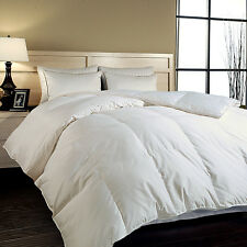 700 TC Cotton Sateen Cover Hungarian  White Goose Down Comforter White
