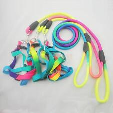 Adjustable Pet Dog Harness Puppy Training Strap Traction Rope Walking Lead Leash
