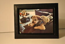 Budd Leather Lizard Leather Picture Frame