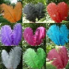 Wholesale 10PCS High Quality Natural Ostrich Feathers 10-12inch/25-30cm US