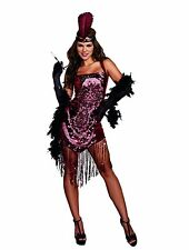 Dreamgirl Gatsby Girl 1920's Flapper Dress Adult Womens Halloween Costume 9834