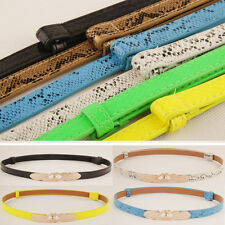 Womens Gold Clasp Buckle Belt Skinny Faux Leather Snake Print Waist Band Belt