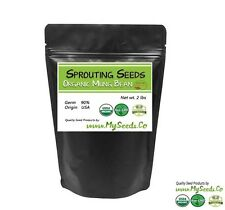 Sprouting Seeds, ORGANIC Mung SPROUTING Seeds, High germination %